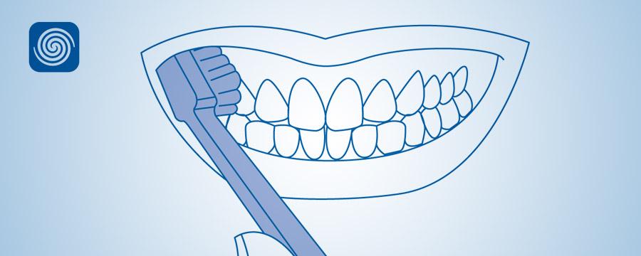 Diş fırçası ilə düzgün təmizlik